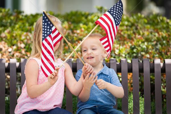 Genç kardeş kardeş amerikan bayraklar Stok fotoğraf © feverpitch