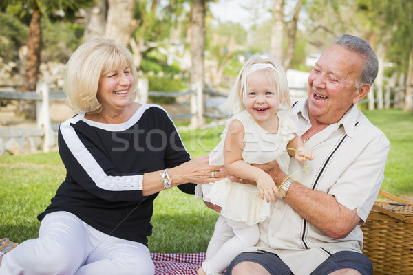 привязчивый внучка дедушка и бабушка играет парка за пределами Сток-фото © feverpitch
