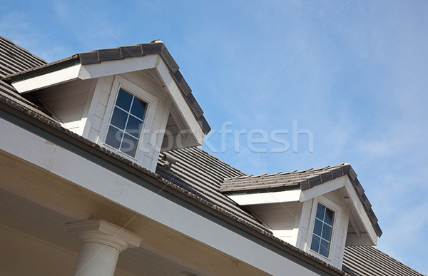 Abstract House Facade Stock photo © feverpitch