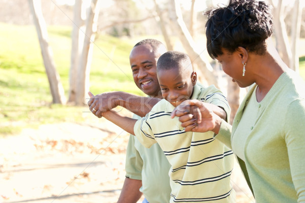 Beautiful African American Family Playing Outside Stock photo © feverpitch