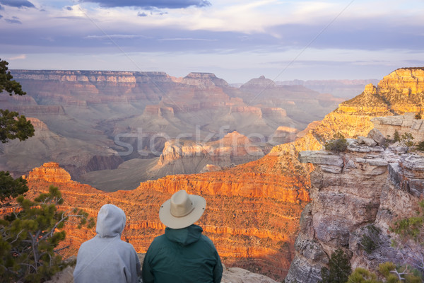 Couple Enjoying Beautiful Grand Canyon Landscape Stock photo © feverpitch