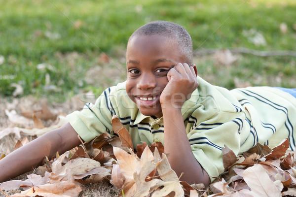 Jovem africano americano menino jogar parque bonito Foto stock © feverpitch