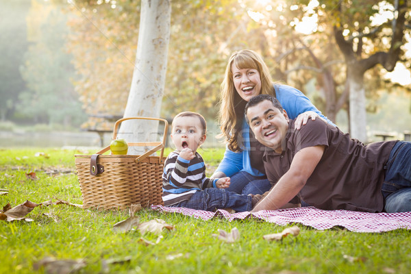 Happy Mixed Race Ethnic Family Having a Picnic In Park Stock photo © feverpitch
