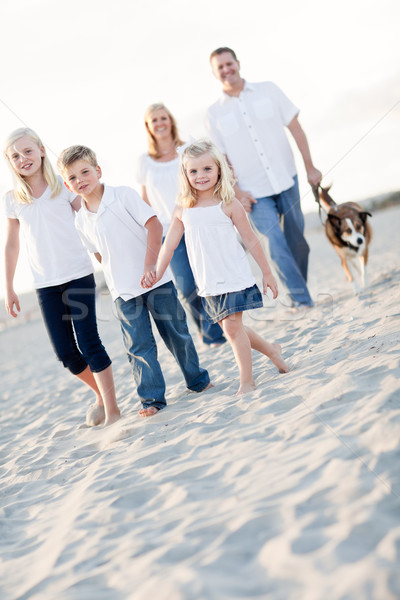 Adorable Little Girl Leads Her Family on a Walk Stock photo © feverpitch