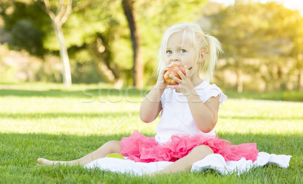 Bambina erba mangiare sano mela cute seduta Foto d'archivio © feverpitch