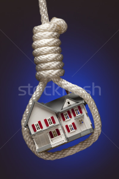 House Tied Up and Hanging in Hangman's Noose on Blue Stock photo © feverpitch