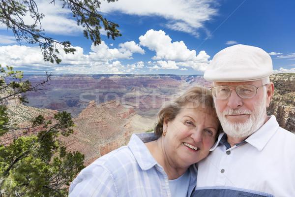 Boldog idős pár pózol perem Grand Canyon ölel Stock fotó © feverpitch