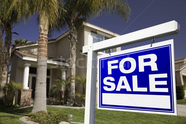 Stok fotoğraf: Satış · gayrimenkul · imzalamak · ev · gökyüzü · ev