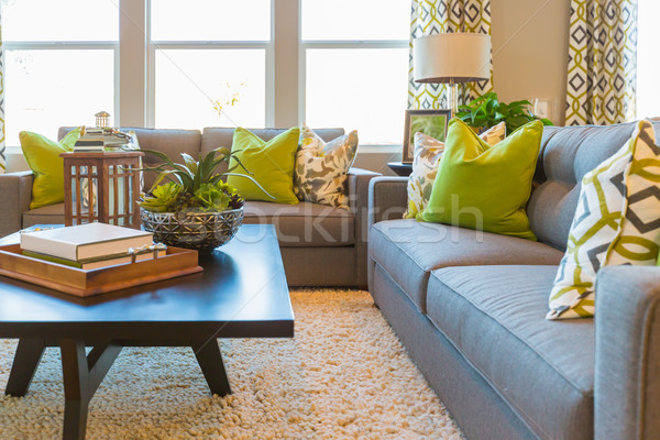 Living Area with Coffee Table and Couch Stock photo © feverpitch