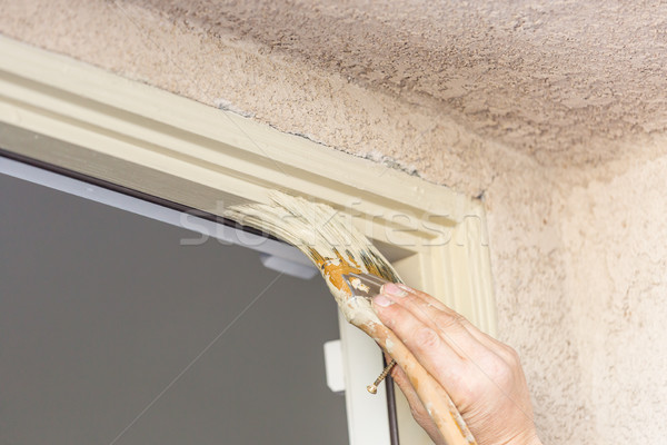Professional Painter Cutting In With Brush to Paint House Door F Stock photo © feverpitch
