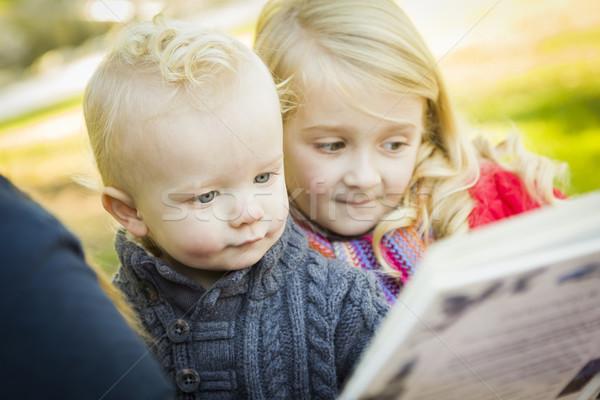Moeder lezing boek twee aanbiddelijk blond Stockfoto © feverpitch
