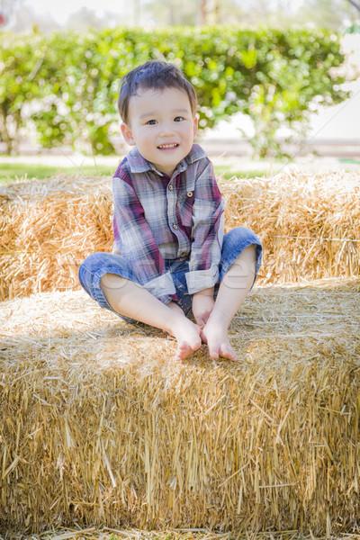Cute giovani ragazzo fieno Foto d'archivio © feverpitch