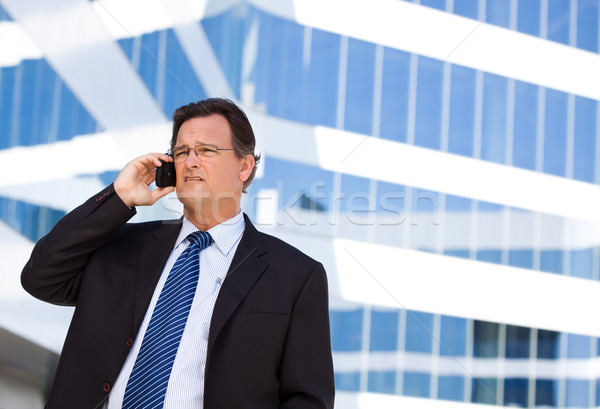 Concerned Businessman Talks on His Cell Phone Stock photo © feverpitch