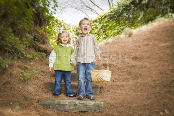 Two Children Walking Down Wood Steps with Basket Outside. Stock photo © feverpitch