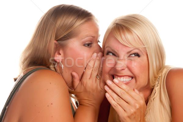 Dois mulher loira segredos isolado branco Foto stock © feverpitch