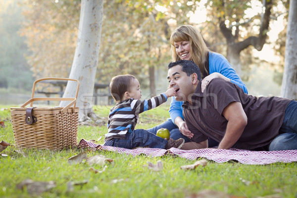 Happy Mixed Race Ethnic Family Having Picnic In The Park Stock photo © feverpitch