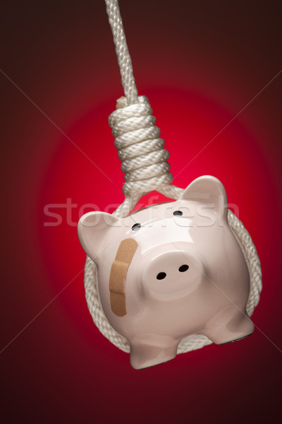 Piggy Bank with Bandage Hanging in Hangman's Noose on Red Stock photo © feverpitch