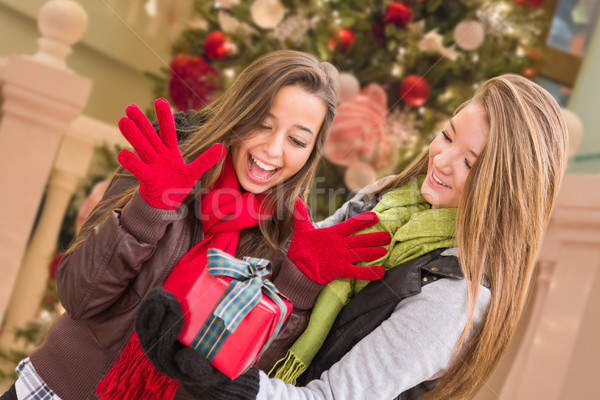 Mixed Race Young Adult Females Exchanging A Christmas Gift In Fr Stock photo © feverpitch