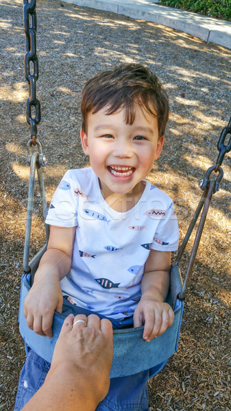 Adorable Chinese and Caucasian Young Boy Having Fun in the Swing Stock photo © feverpitch