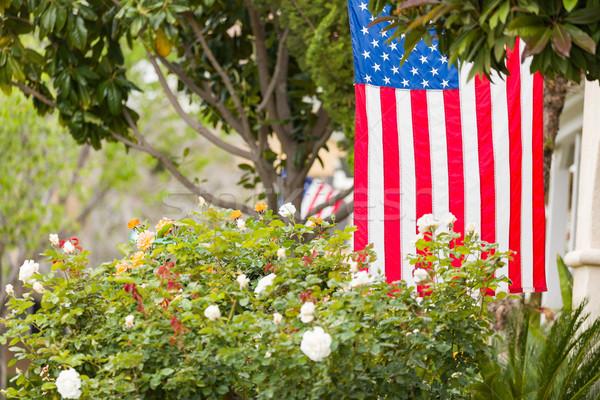 американский флагами городского американский флаг красивой Сток-фото © feverpitch