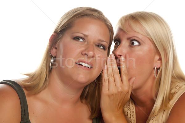два Секреты изолированный белый Сток-фото © feverpitch