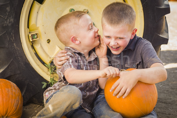 Two Boys Sitting Against Tractor Tire Holding Pumpkins Whisperin Stock photo © feverpitch