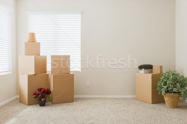 Választék költözködő dobozok üres szoba növények szoba szöveg Stock fotó © feverpitch
