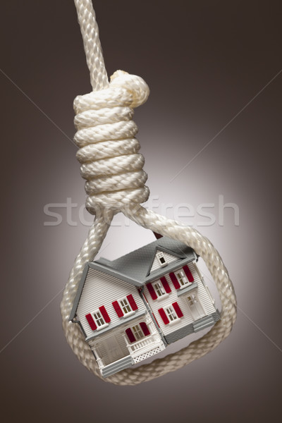 House Tied Up and Hanging in Hangman's Noose on Stock photo © feverpitch