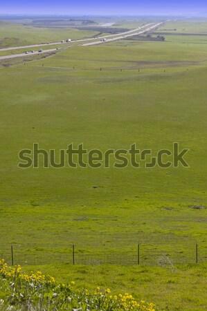 California interstatale verde scenico cielo erba Foto d'archivio © feverpitch
