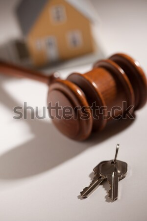 Gavel, House Keys and Model Home Stock photo © feverpitch