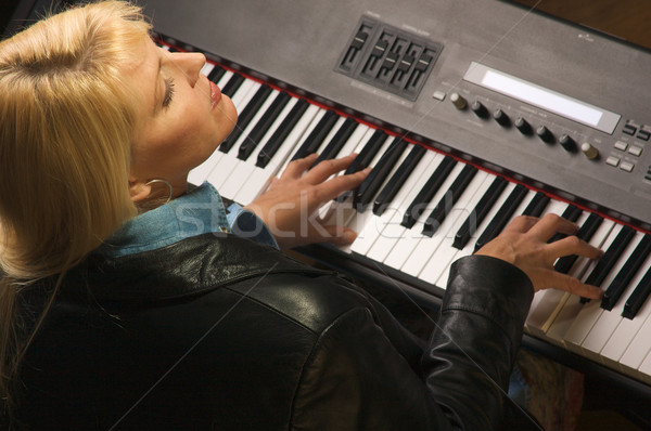 Female Musician Performs Stock photo © feverpitch