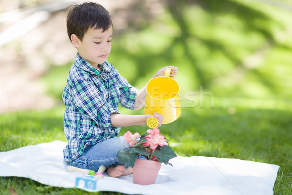 Mixed Race Young Boy Watering His Potted Flowers Outside On The  Stock photo © feverpitch