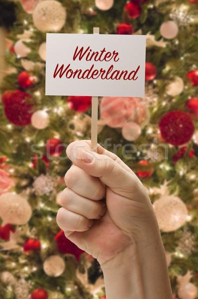 Mano invierno mundo maravilloso tarjeta decorado Foto stock © feverpitch
