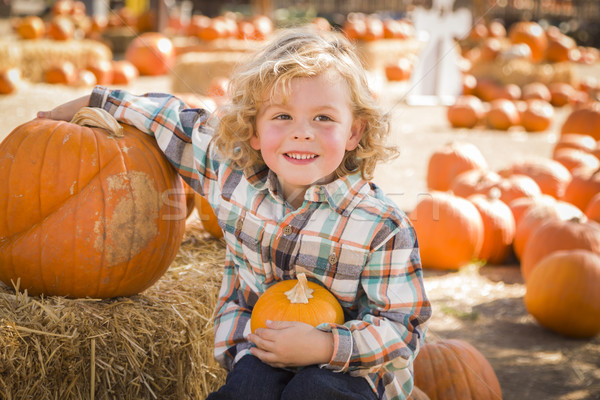 Little Boy Sitting and Holding His Pumpkin at Pumpkin Patch Stock photo © feverpitch