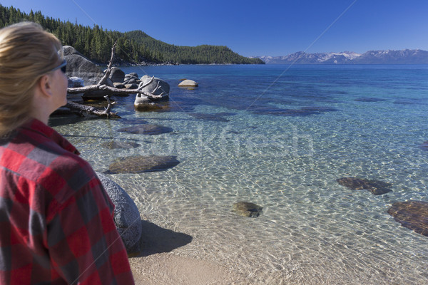 Woman Looking Over Beautiful Shoreline of Lake Tahoe. Stock photo © feverpitch