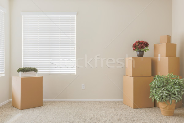 Variety of Packed Moving Boxes In Empty Room Stock photo © feverpitch