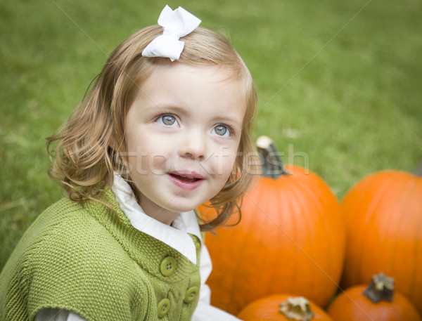 Cute Young Child Girl Enjoying the Pumpkin Patch. Stock photo © feverpitch