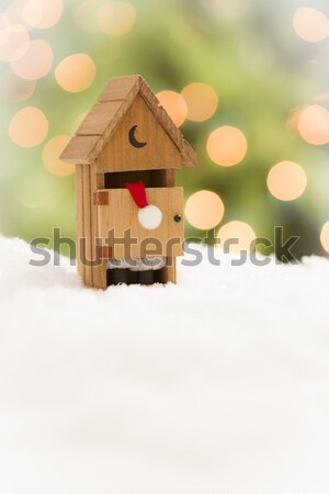 Santa in An Outhouse on Snow Over and Abstract Background Stock photo © feverpitch