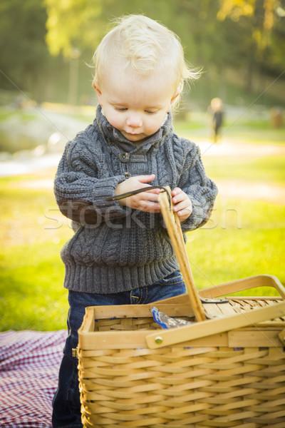 Bebek erkek açılış piknik sepeti açık havada Stok fotoğraf © feverpitch