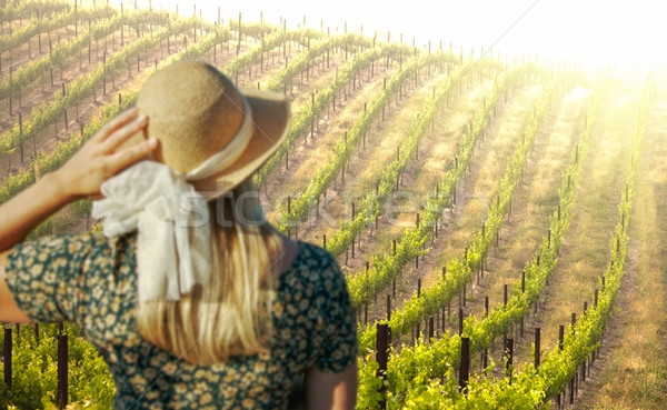 Belle femme Winery printemps jour femme paysage Photo stock © feverpitch