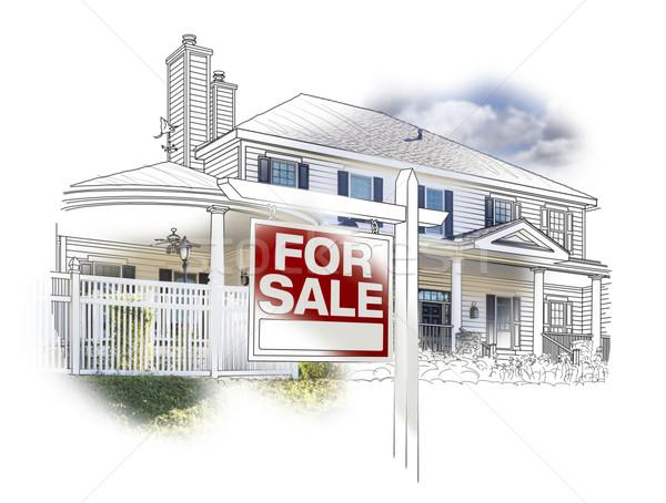 Ház vásár felirat rajz fotó fehér Stock fotó © feverpitch