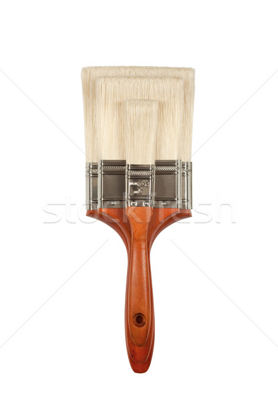 New Paint Brushes on White Stock photo © feverpitch