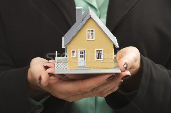 Stockfoto: Huis · vrouwelijke · handen · klein · home