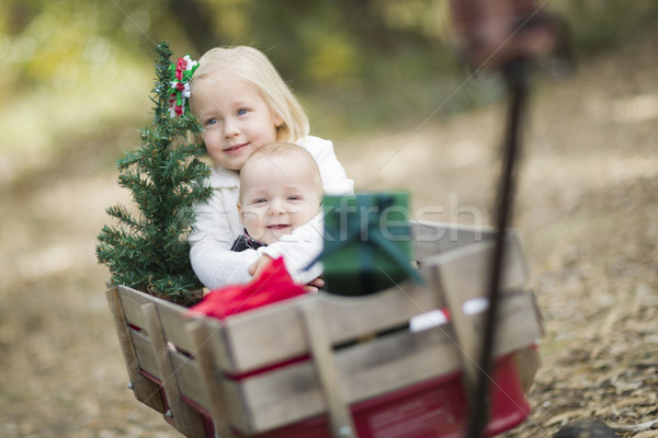 Baby Brother and Sister Pulled in Wagon with Christmas Tree Stock photo © feverpitch