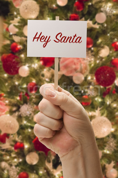 Hand Holding Hey Santa Card In Front of Decorated Christmas Tree Stock photo © feverpitch