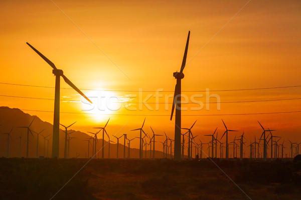 Silhouetted Wind Turbines Over Dramatic Sunset Sky Stock photo © feverpitch