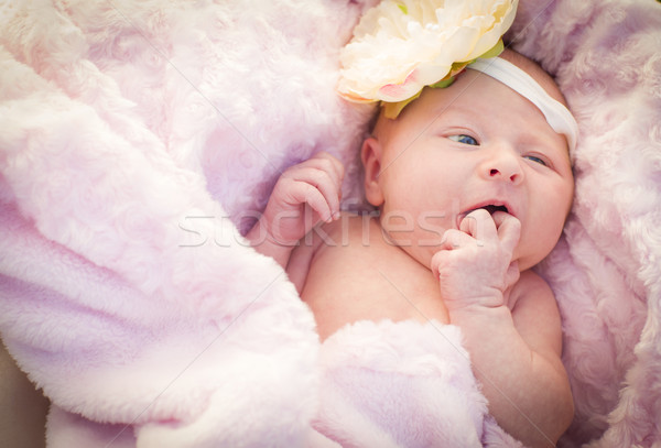 Beautiful Newborn Baby Girl Laying in Soft Blanket Stock photo © feverpitch
