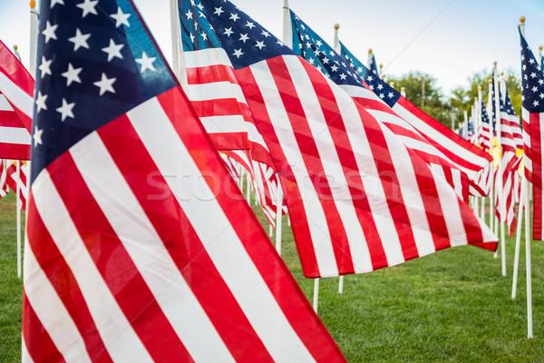 Campo dia americano bandeiras brisa Foto stock © feverpitch