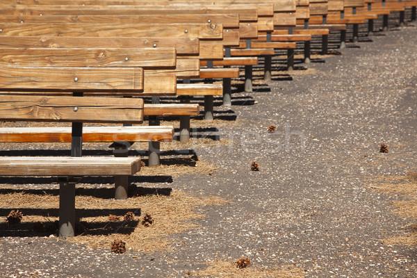 Ao ar livre anfiteatro abstrato pinho Foto stock © feverpitch