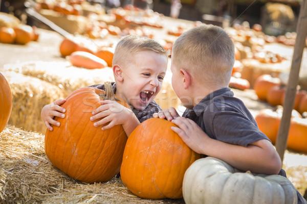 Stockfoto: Twee · jongens · pompoen · praten